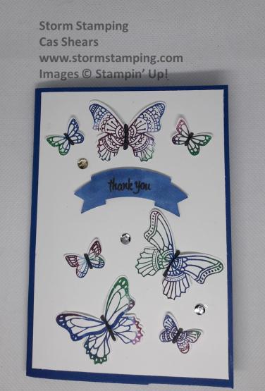 babywipe buttrflies