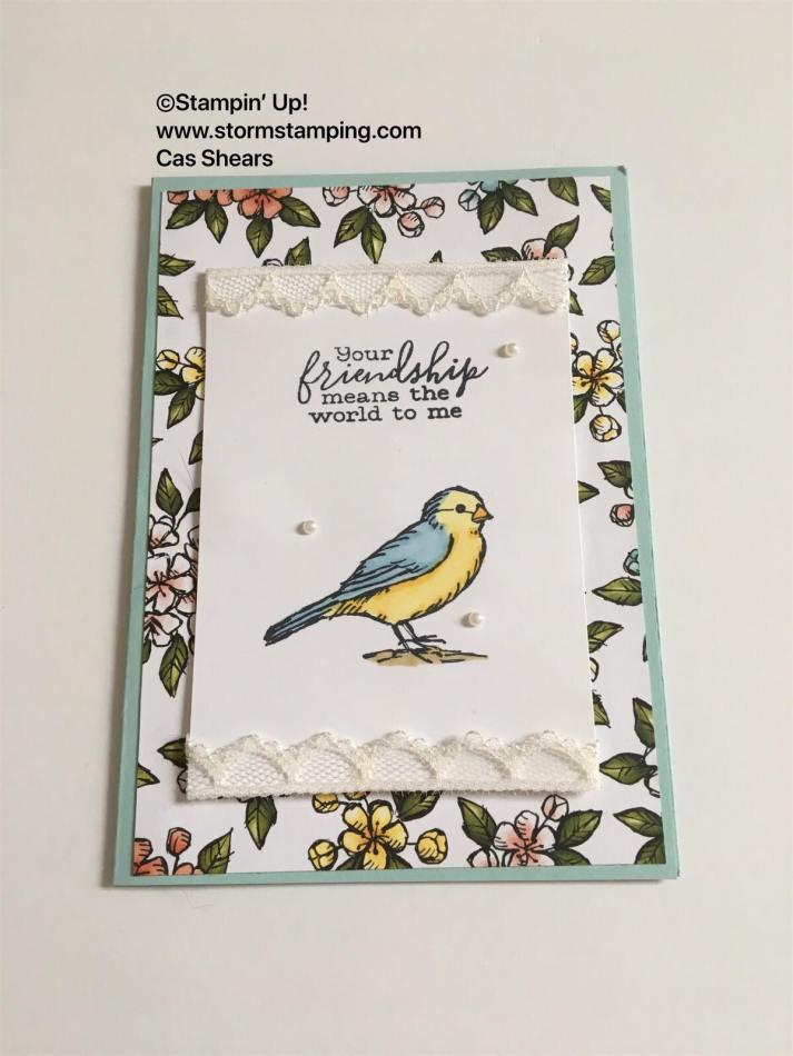 bird ballad swap