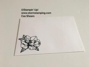Magnolia Blooms env
