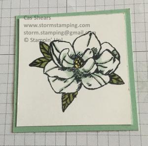magnolia lane sqare