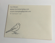 Bird Ballad Laser Cut Card env